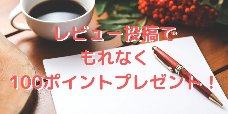 VAPONAUTE LA OUATE / VAPE電子タバコ専用コットン